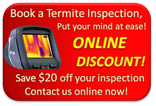 Book a Termite Inspection Discount