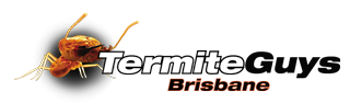 Contact Termite Guys Brisbane Today 0447 268 257